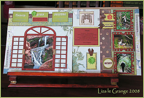 Liza window